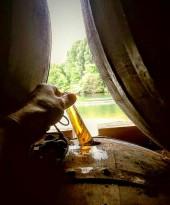 Notre fût est unique, il a passé environ 25 ans dans un chai humide au bord de la charente.